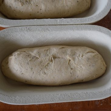 Shaping a Loaf….
