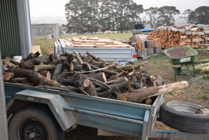 wood ready for unloading